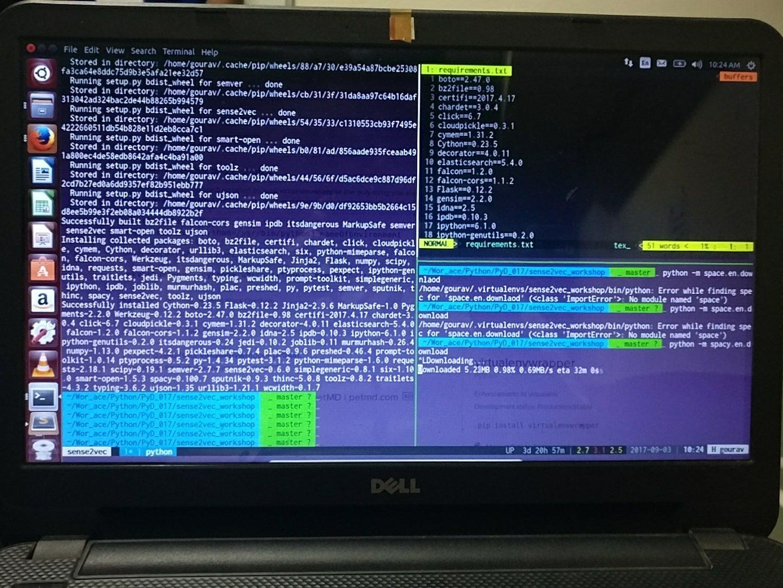 PyData Delhi sense2vec workshop setup